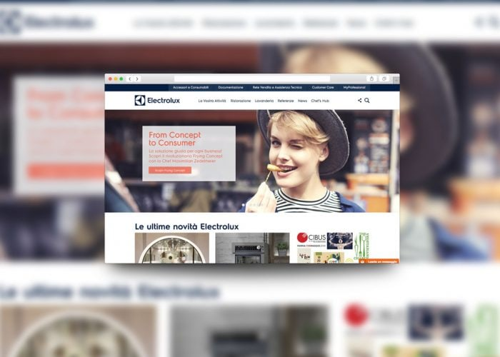 electrolux professional home page