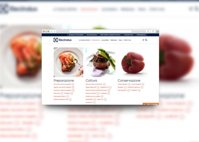 web agencyelectrolux professional food page