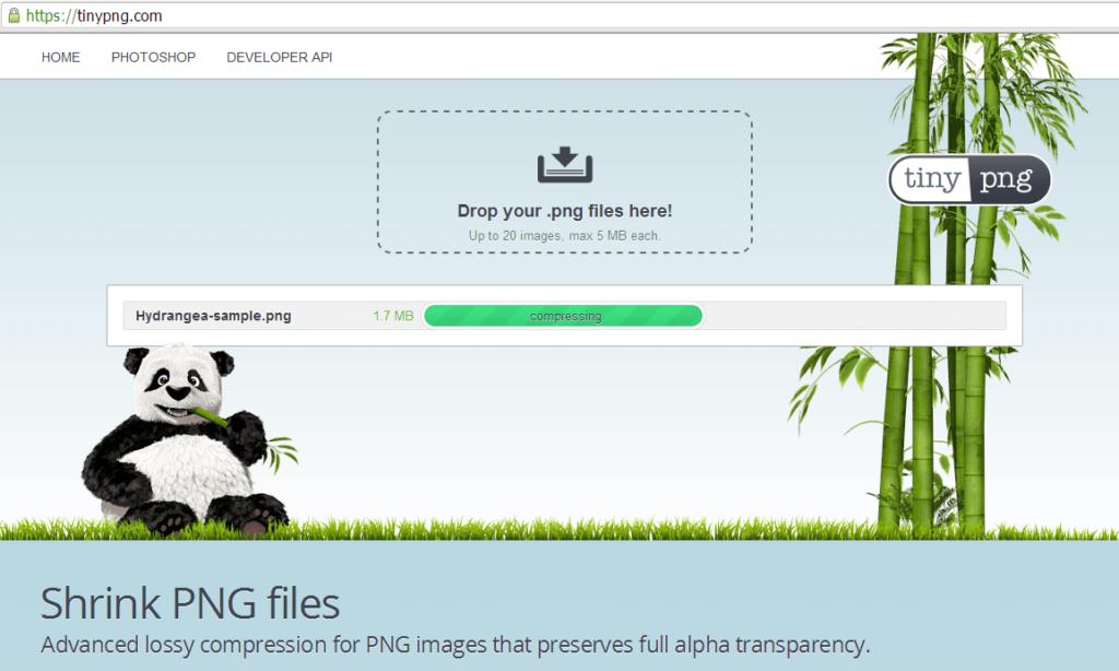 TinyPNG-for-Web-1024x614 Come ottimizzare le immagini per il Web